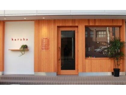 ハルク(haruku)の写真