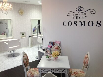 TIDY BY COSMOS