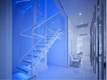 ビースリー(B-THREE)の雰囲気(七色に光るスケルトンの階段。それはまさに美しくなるための階段)