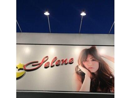 セレーネ(Selene)の写真