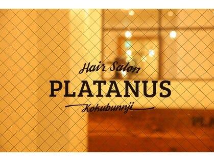 プラタナス 国分寺(PLATANUS)の写真
