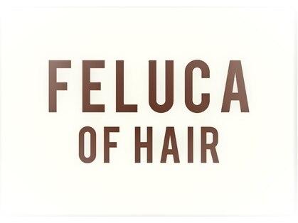 フェルーカ オブ ヘア(FELUCA OF HAIR)の写真