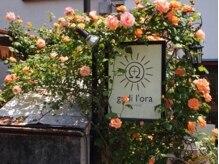 """ゴディオラ(godil'ora)の雰囲気(お客様から""""季節毎に変わる庭園が楽しみの一つ""""という声も♪)"""