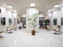 クレメンティアヘアー(Clementia hair)の雰囲気(店内は観葉植物が多数置いてある、癒し空間。)