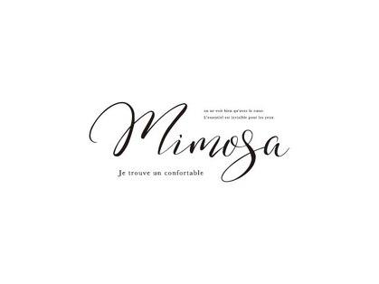 ミモザ MiMoSaの写真
