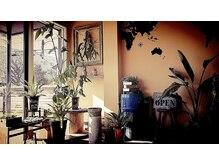 ヘアーデザイン ディードット(Hair design D.)の雰囲気(おしゃれな植物と雑貨のフロント【D.宇都宮】)