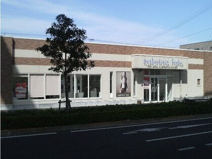 サブリナフェア 中央インター店の写真