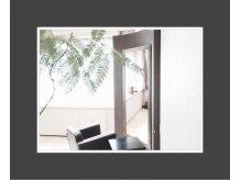 ルーチェ(Luce)の雰囲気(席と席の間隔が広く、ゆったりとしたつくりの店内。)