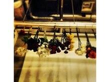 マチルダ ヘアーサロン(Matirda hair salon)の雰囲気(植物達もいっぱい♪)