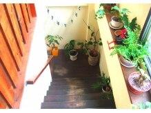 グリーンピース(green peace)の雰囲気(フロアをつなぐ階段にはgreenでリラックスできる空間♪)
