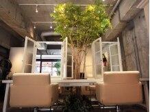 アルテバイスピリティ(ARTE by sprity)の雰囲気(セット面の真ん中にハートの形の木が!!緑が心を癒してくれます♪)