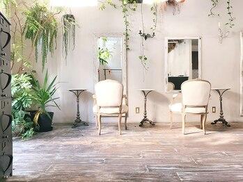 ラグ(log)の写真/センスの良いアトリエ風の空間。ヘアサロンらしくないアンティークの椅子で過ごす至福のサロンタイム♪