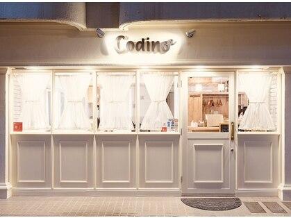 コディーノ(codino)の写真