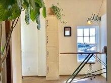 アトリエ ラマ(Atelier Lama)の雰囲気(観葉植物のある空間でリラックス◎)