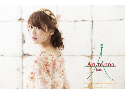 アンテナヘアー(Antenna hair)の写真