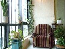 オドミックストゥハッピーメイカーズ(Odd MiX to happy makers)の雰囲気(窓際のスペースは優しい光と緑があふれる空間)