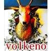 ヴォルケーノのお店ロゴ