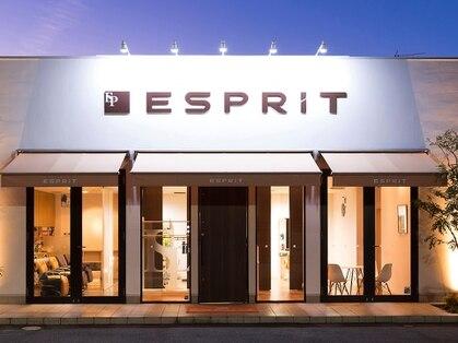 エスプリ(ESPRIT)の写真