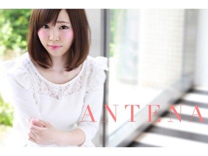 アンテナ 知立店(ANTENA)の写真