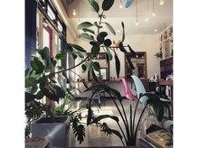 フラップヘアー(FLAP HAIR)の雰囲気(光が溢れる解放感のある内観は木と緑が彩るリラクゼーション空間)
