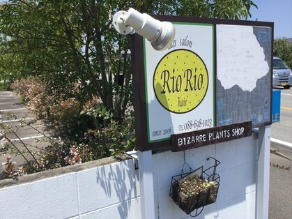 リオ リオ ヘアー(Rio Rio hair)の写真
