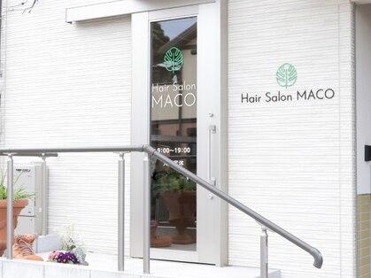 マコ(MACO)の写真