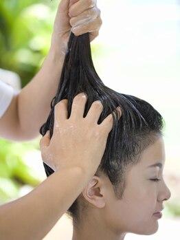 ヘアアンドメイク マカロン(hair&make macaron)の写真/大人女性や男性に◎ 髪と地肌に栄養を与え、ハリと弾力を。 [ハーブ炭酸スパ*COSMOS ORGANICクレイスパ]