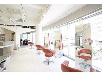 ステラ ヘア デザイン サロン(STELLA hair design salon)