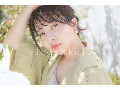 ヴィッカエコル (vicca 'ekolu)の写真