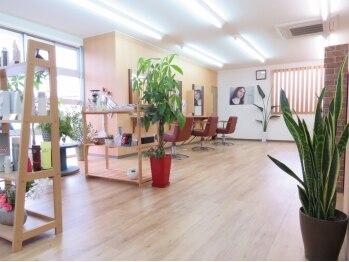 """ヘアアンドスパピノキオ(HAIR&SPA PINOKIO)の写真/大型店が苦手…そんなあなたにオススメの""""PINOKIO""""☆木の温もりを感じ、ゆったりと過ごせる癒しの空間♪"""