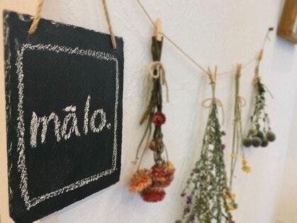 マァロ(malo.)の写真