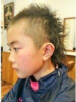 テトラ ヘアー(TETRA hair)わんぱくフェザーバックvr2