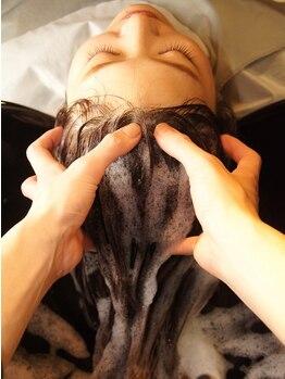 フリーダム 池下店(Freedom)の写真/天然由来の植物エキスを配合した美髪を育む頭皮環境へ導くヘッドスパ。ハリ・コシある艶やかさを保つ髪に♪