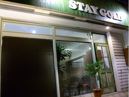 ステイゴールド(STAY GOLD) 画像
