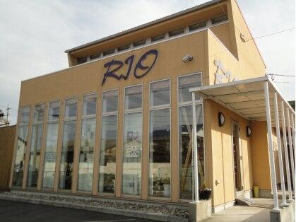 リオ(RIO)の写真
