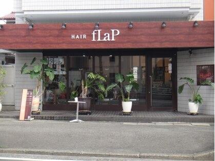 フラップ(fLaP)の写真