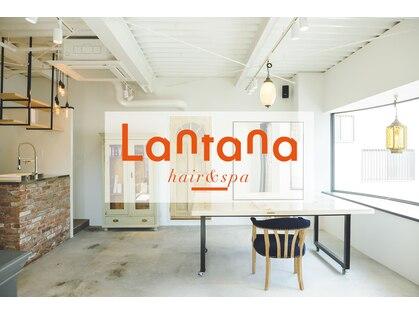 ランタナ(Lantana)の写真