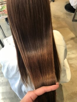 ディプティモイラ(dipty MOILA)の写真/【究極の髪質改善を体感◎】話題のホリスティックメニュー★トップクラスの髪修復技術で芯から美しく♪