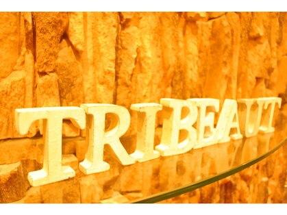 トリビュート(Tribeaut)の写真
