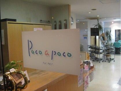 美容室 ポコアポコ(POCO A POCO)の写真