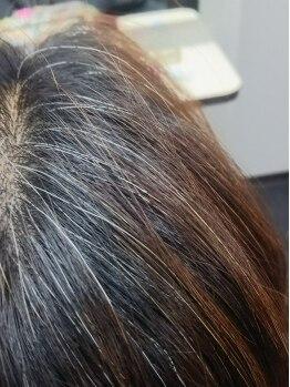 シェア(Share)の写真/【キラキラ光る白髪を抑制するカラー+カット¥7000】髪のエイジングを考え抜いた薬剤を使用!