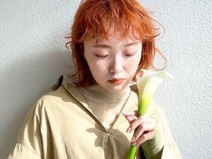 モリオフロムロンドン成増3号店の写真