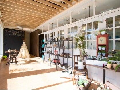 花やの前の美容室 狭山店の写真