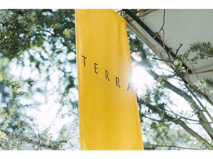テラ(TERRA)の写真