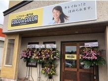 ココデカラー 小千谷店(COCO de COLOR)