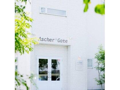 アシェルゲイト(Ascher+Gate)の写真