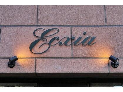 エクシア(Ecxia)の写真