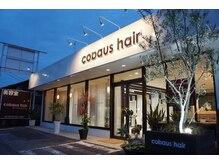 コバウスヘアー(cobaus hair)の雰囲気(来ていただいたお客様の楽しいひととき、笑顔の帰宅を大切に…。)