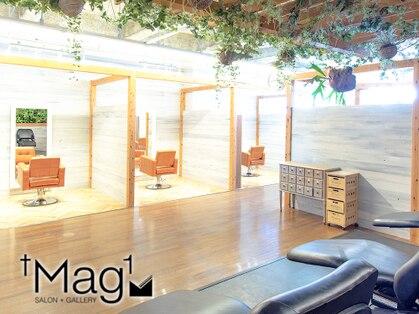 マグサロンギャラリー(Mag salon gallery)の写真