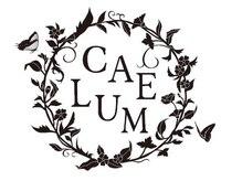 CAELUMのこだわりポイント